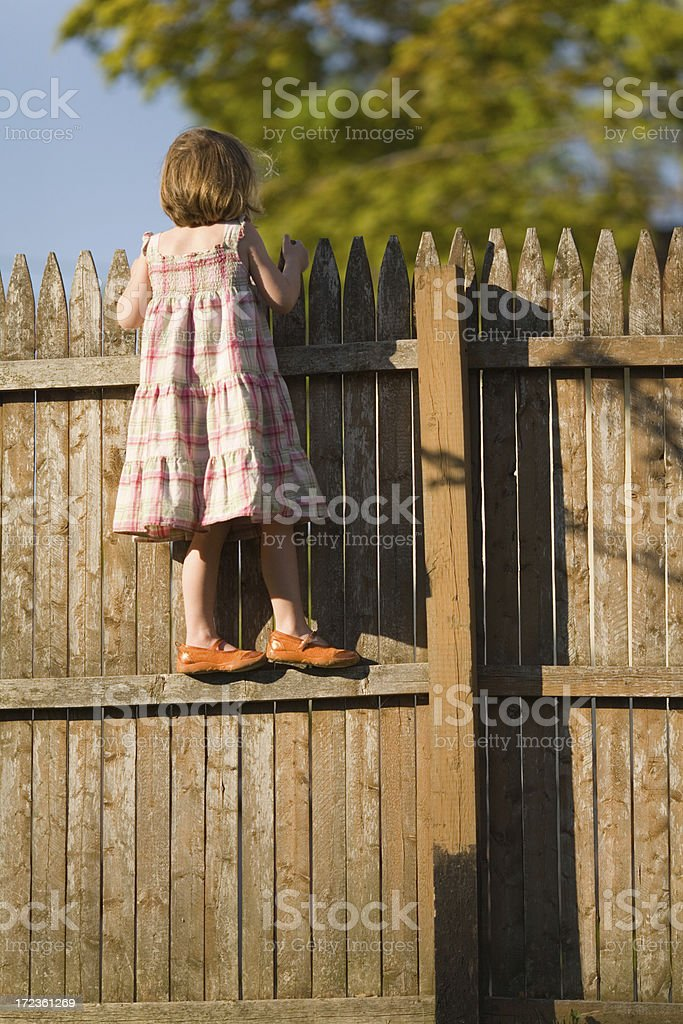 Climbing the Fence royalty-free stock photo