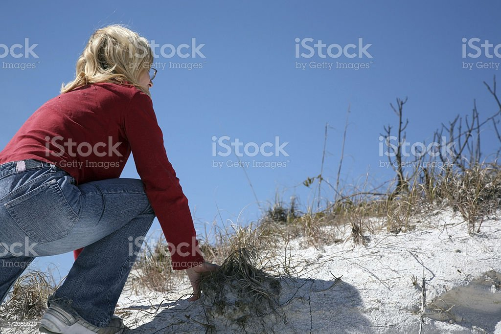 Climbing up to the top! royalty-free stock photo