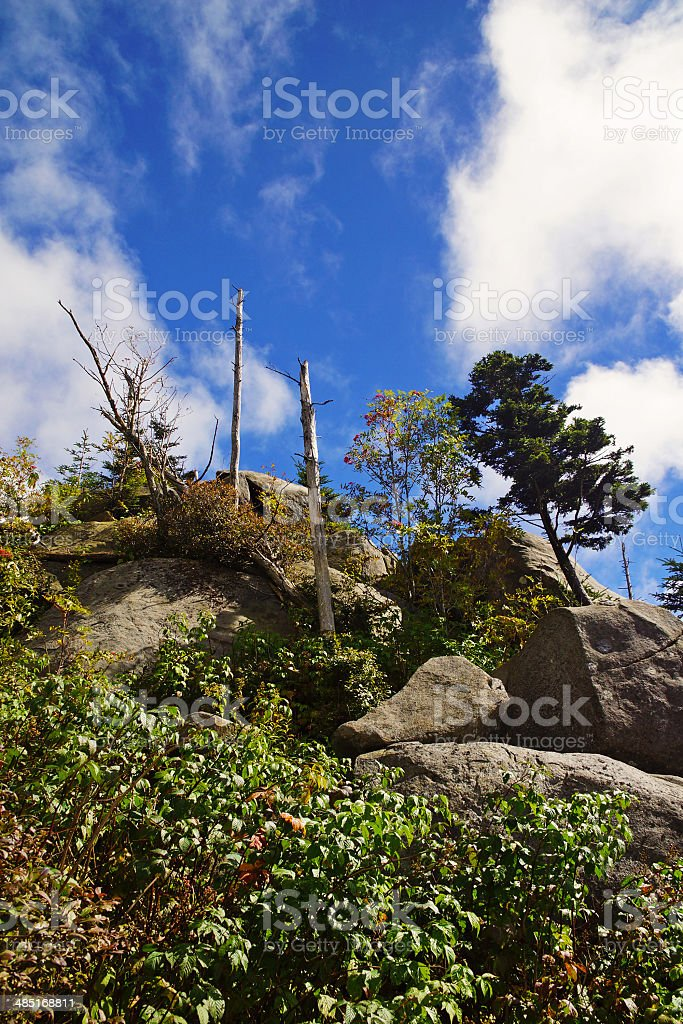 Clingman's Dome at Great Smoky Mountain National Park stock photo