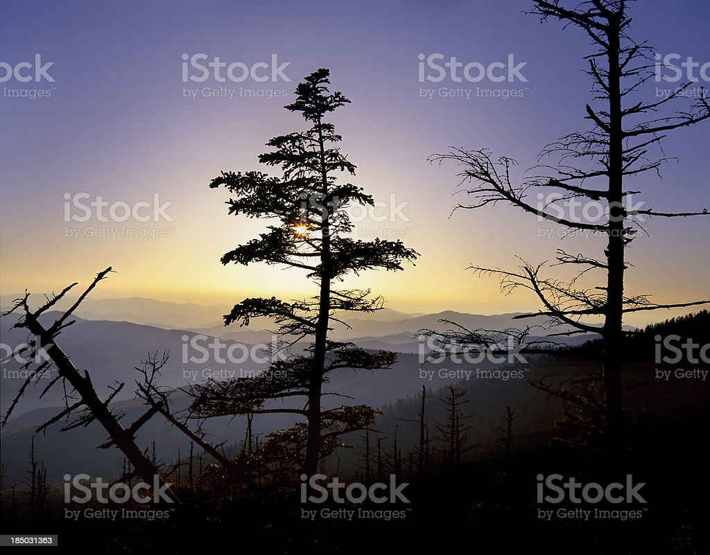 Clingman's Dome Sunset royalty-free stock photo