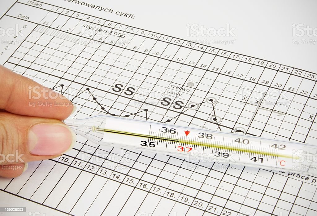 Clinical thermometer located on fertility chart royalty-free stock photo