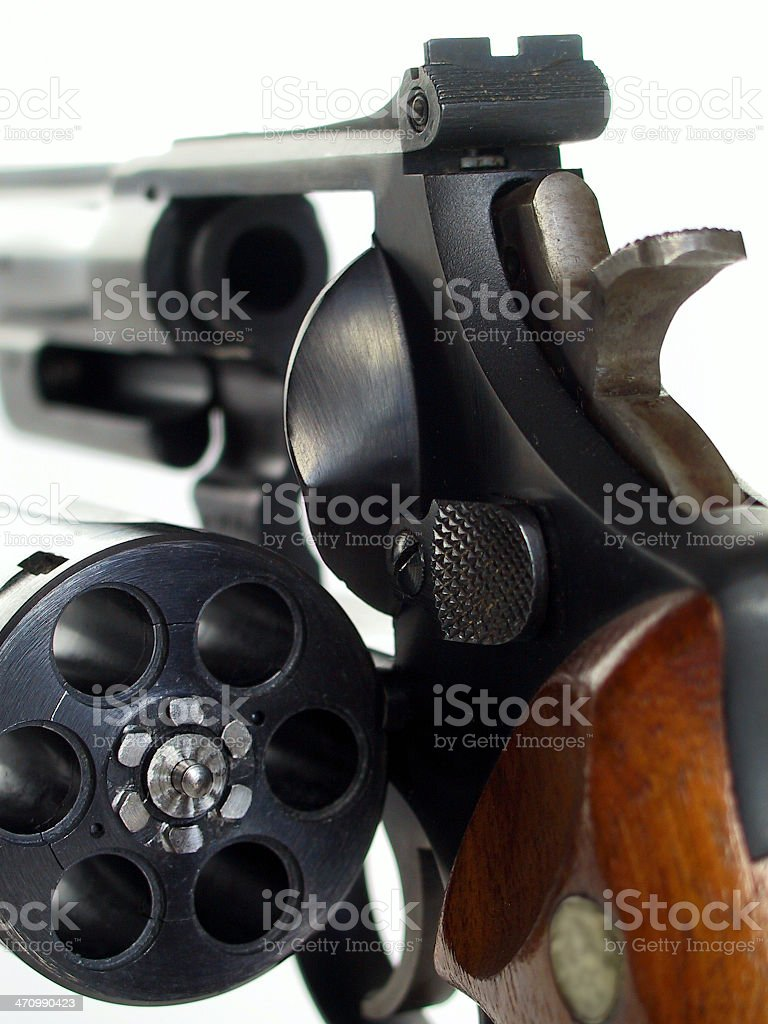 Clint Eastwood's gun - 357 Magnum royalty-free stock photo