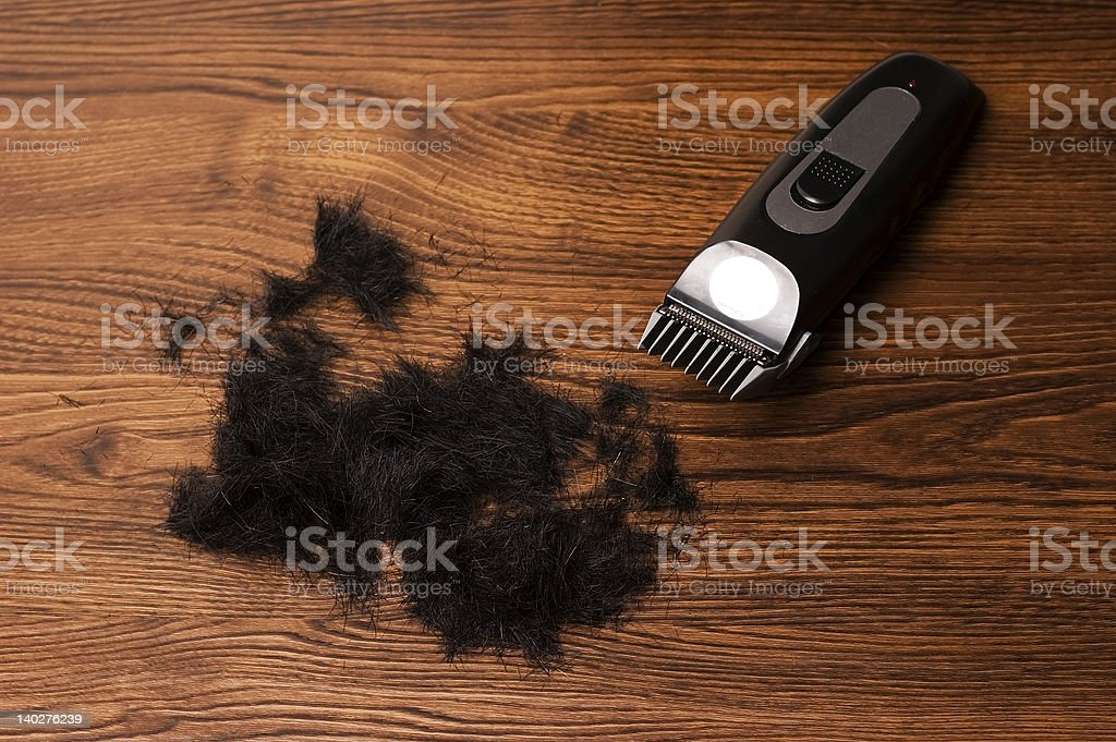 clippers royalty-free stock photo