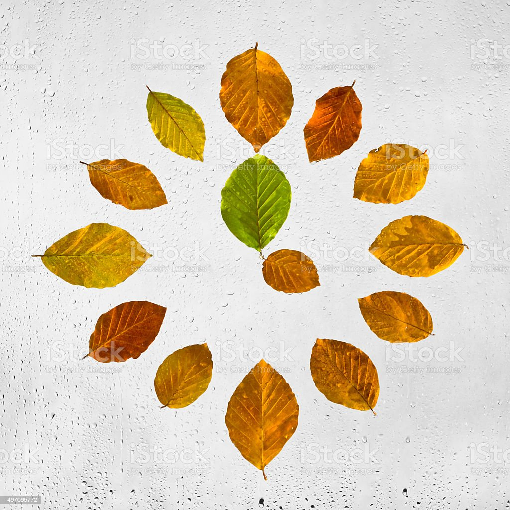 Clock stacked with colorful autumn beech leaves. Four o'clock. stock photo