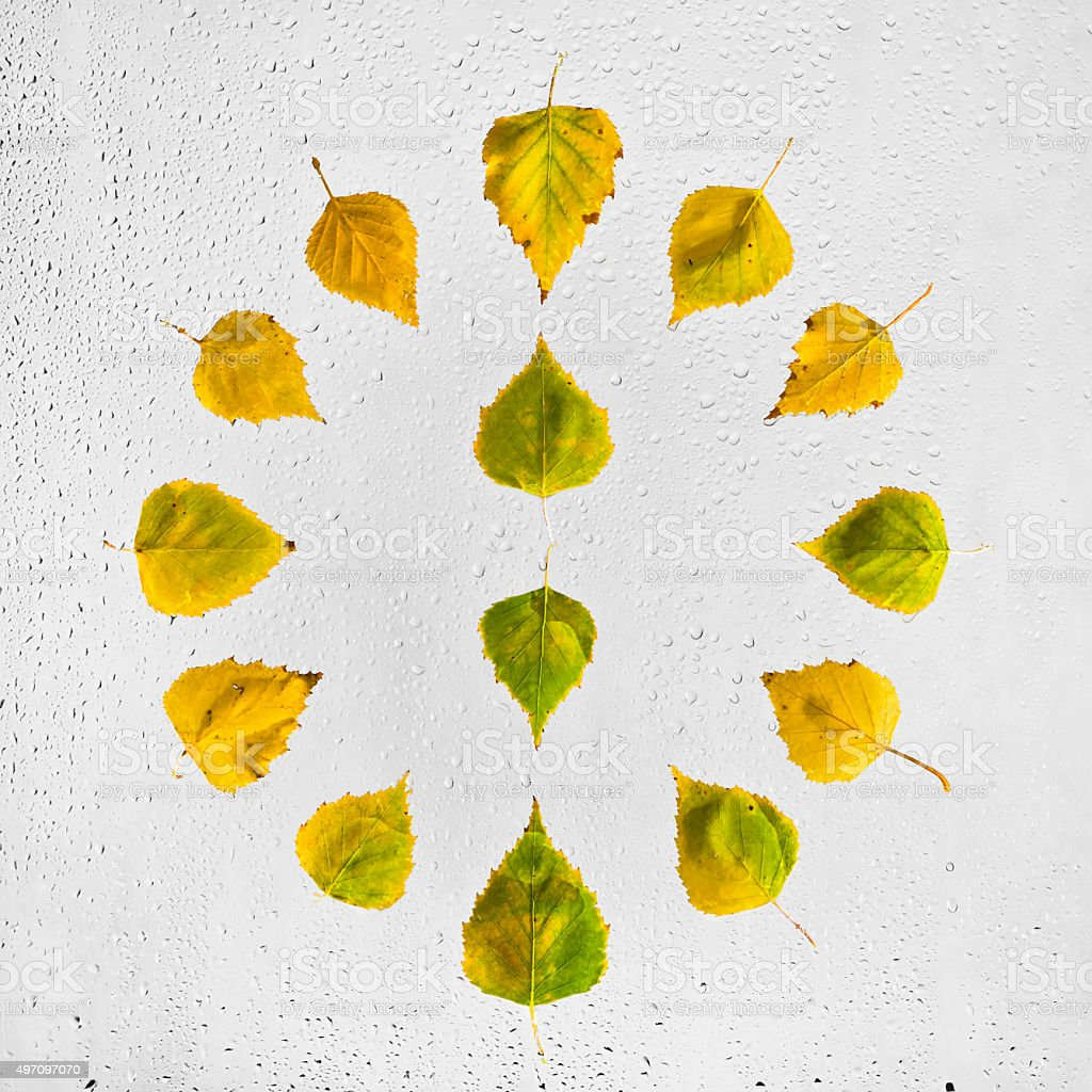 Clock stacked with colorful autumn beech leaves on the  glass. stock photo