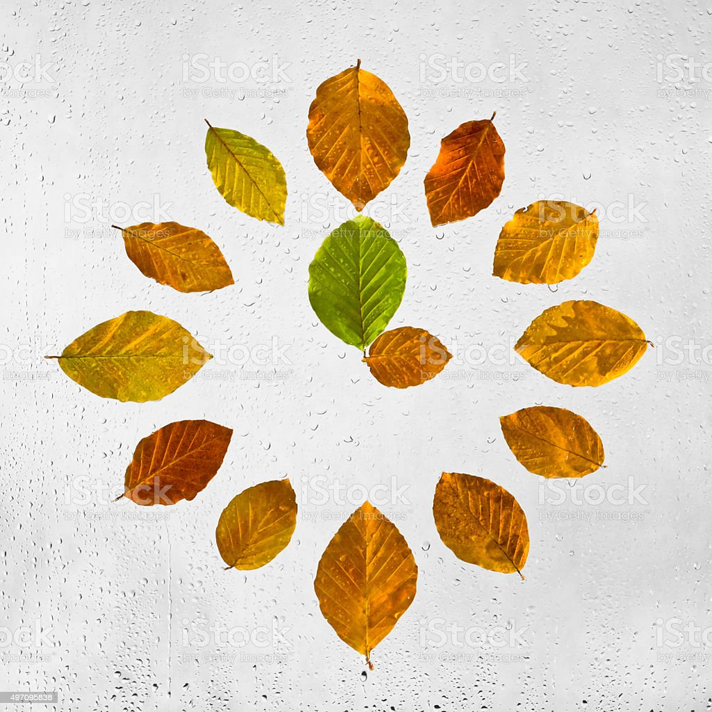 Clock stacked with colorful autumn beech leaves. Three o'clock. stock photo