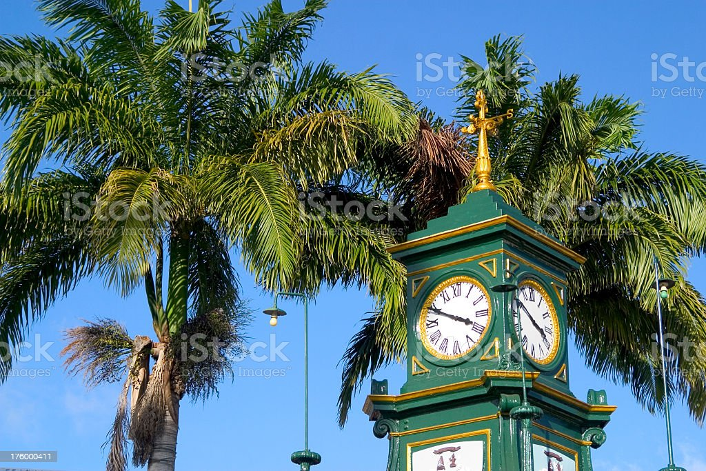 Clock Tower and Palm royalty-free stock photo