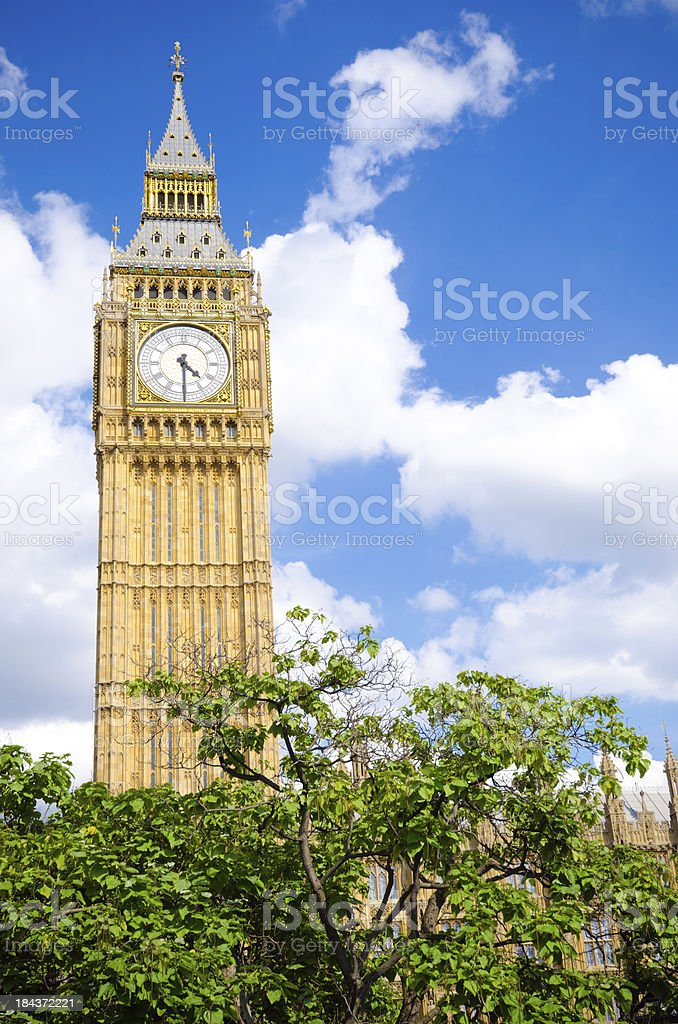 Clock tower housing Big Ben with trees at Parliament, London royalty-free stock photo