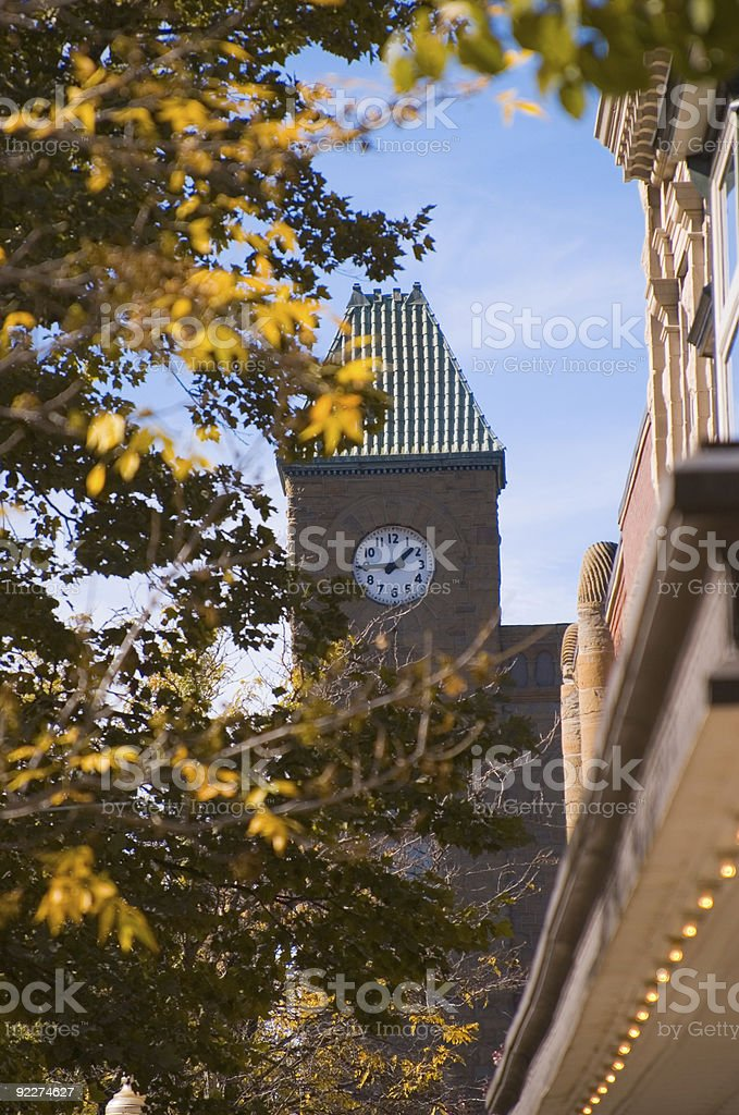 Clock Tower through the Trees royalty-free stock photo