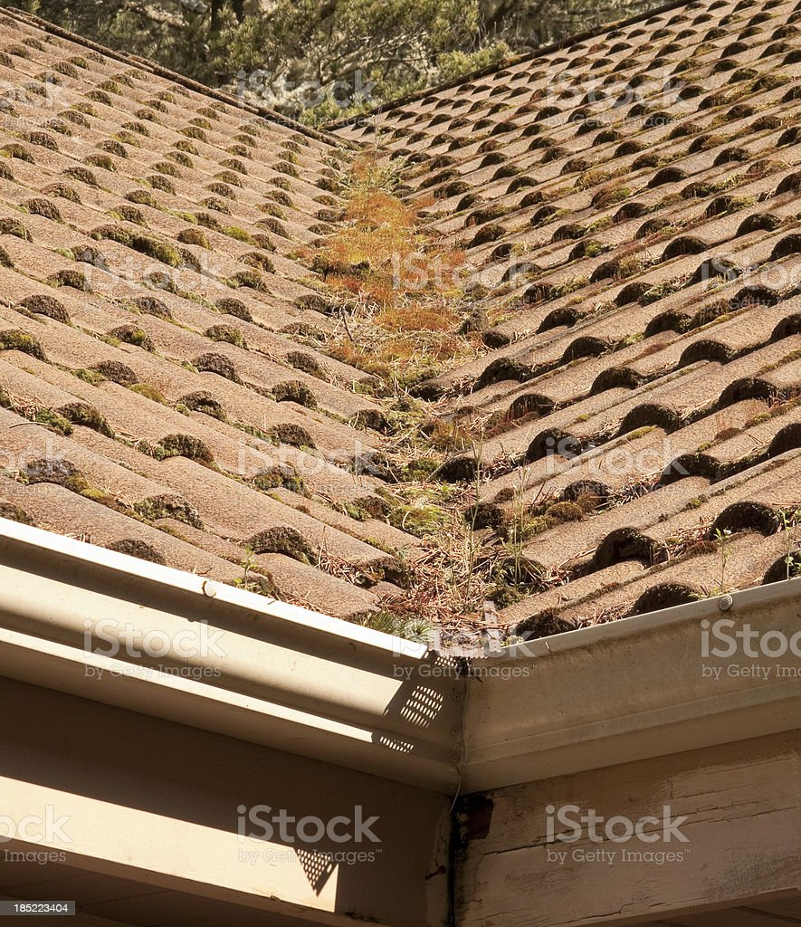 Clogged Roof Gutter stock photo