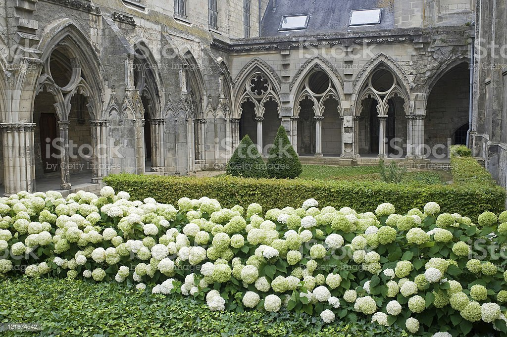 Cloister of abbey in Soissons (Picardy, France) with white hydrangeas royalty-free stock photo