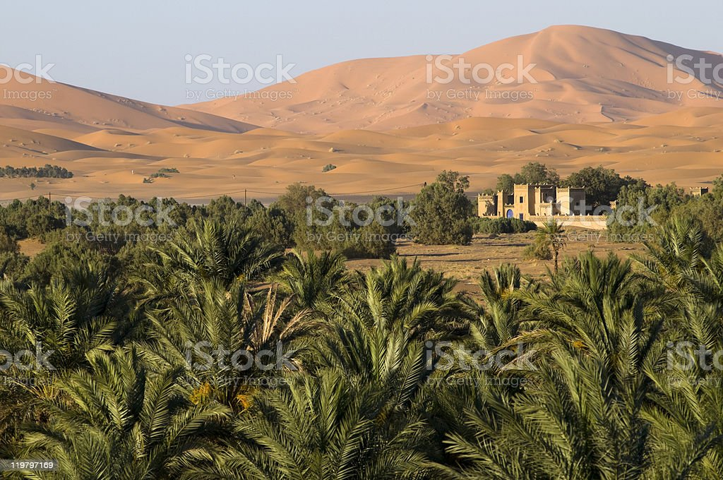 Close to the desert. stock photo
