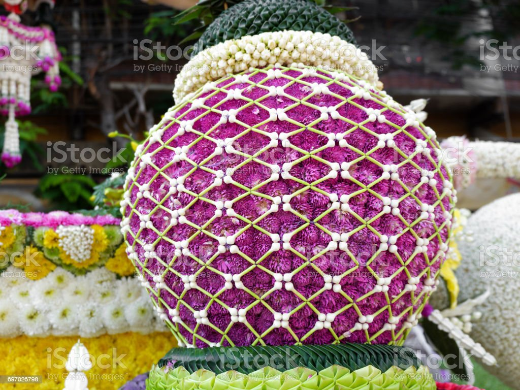 Close up Amaranth bush in Chiang Mai Flower Festival 2017 stock photo