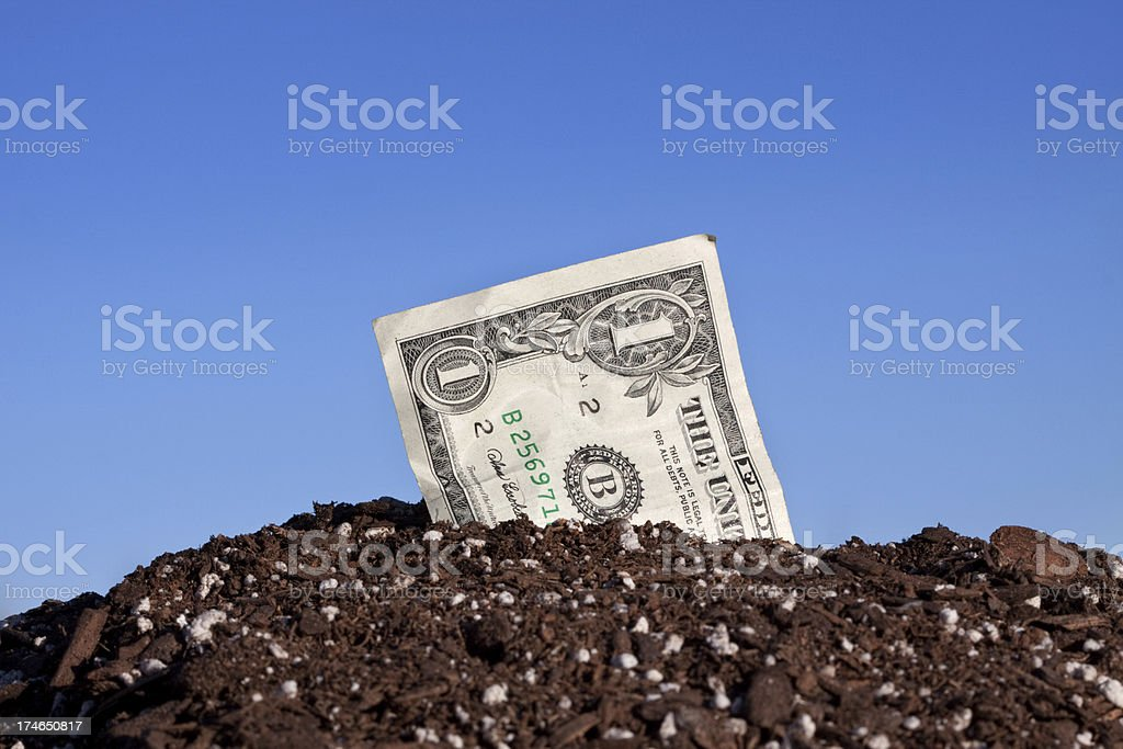 Close Up American Currency Dollar Buried Outdoors in Dirt royalty-free stock photo