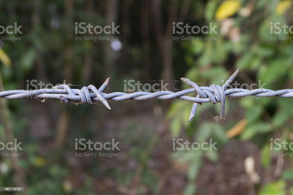 Close up Barbed Wire Entanglement Detail stock photo
