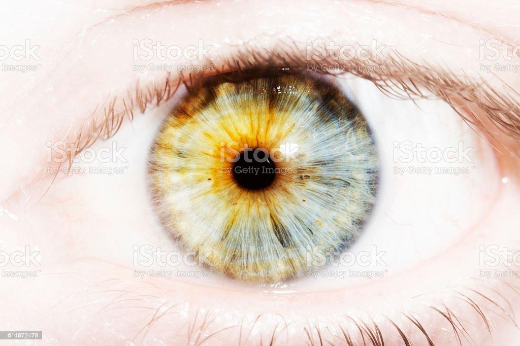 Close up beautiful eye stock photo