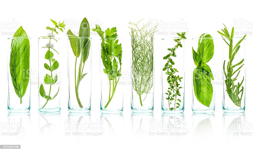 Close Up bottles of essential oils with fresh herbs . stock photo
