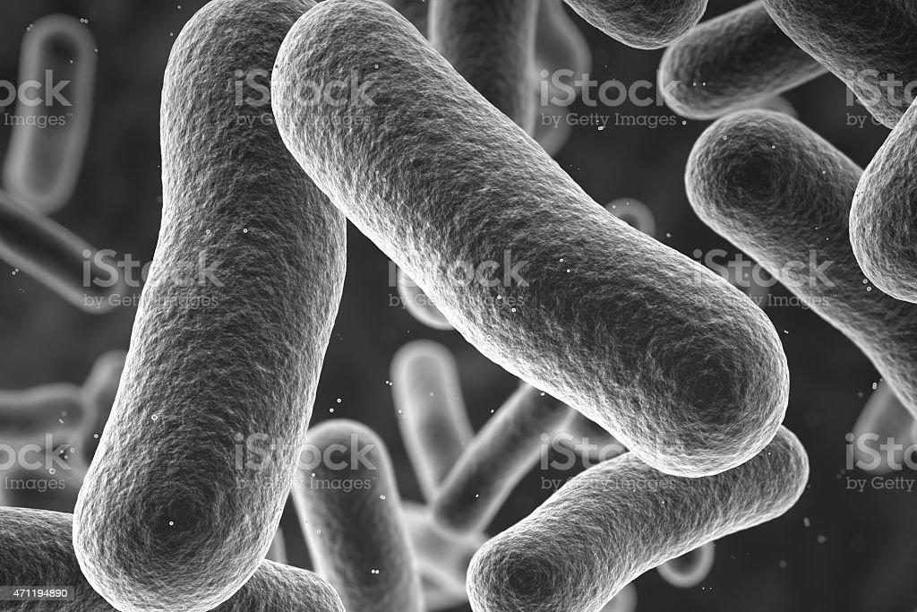 Close up bow photo of bacteria stock photo