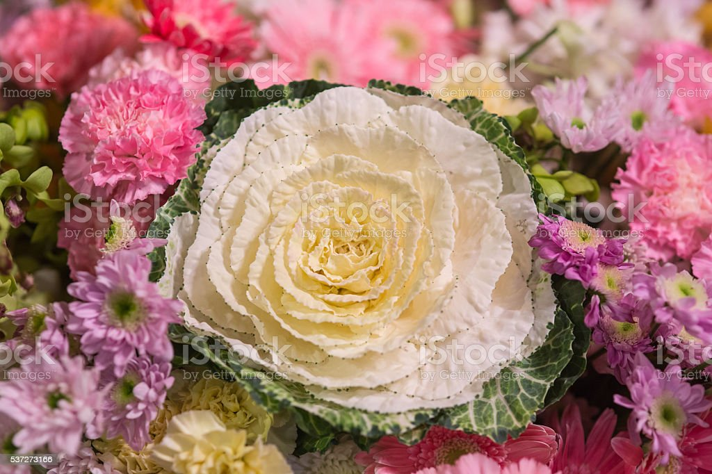 Close up Bunch of wedding bouquet stock photo
