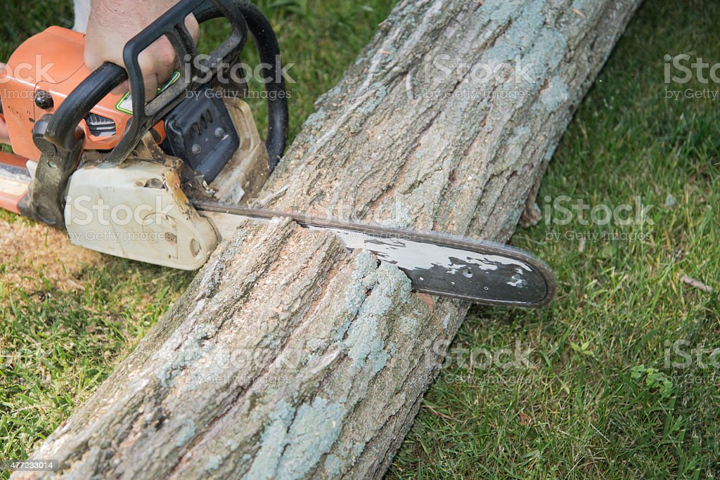 Close up chain saw with motion blur cutting fallen tree stock photo