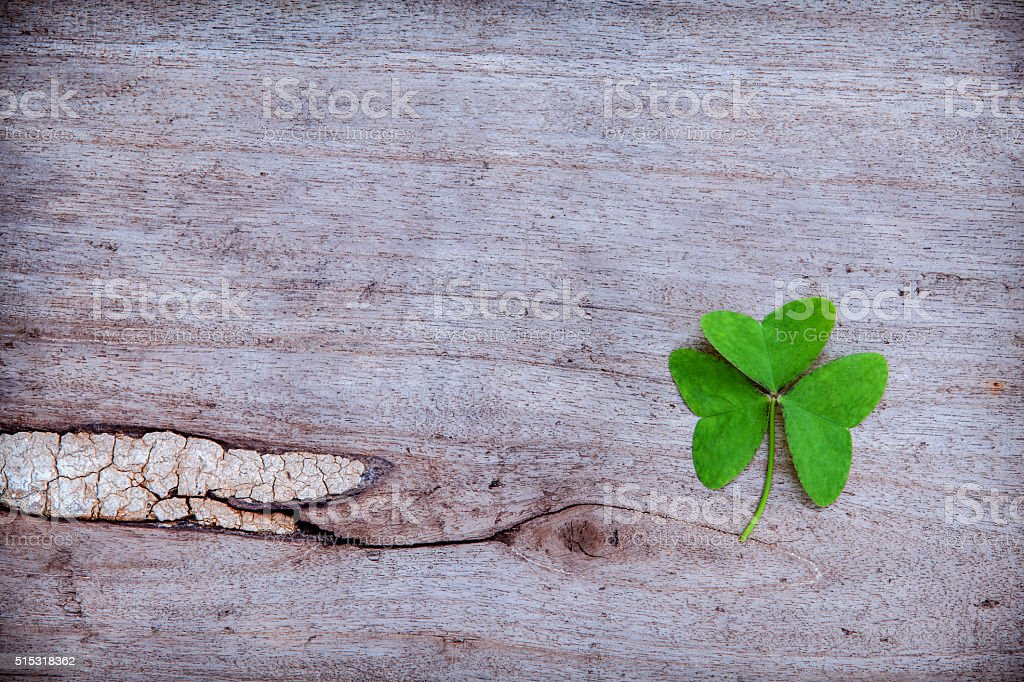 Close Up clovers leaves setup on rustic wooden background. stock photo