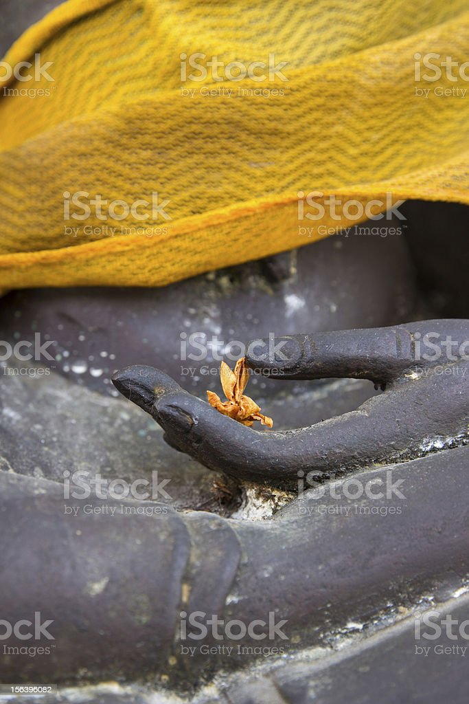Close up Dry Flower on hand Buddha statue royalty-free stock photo