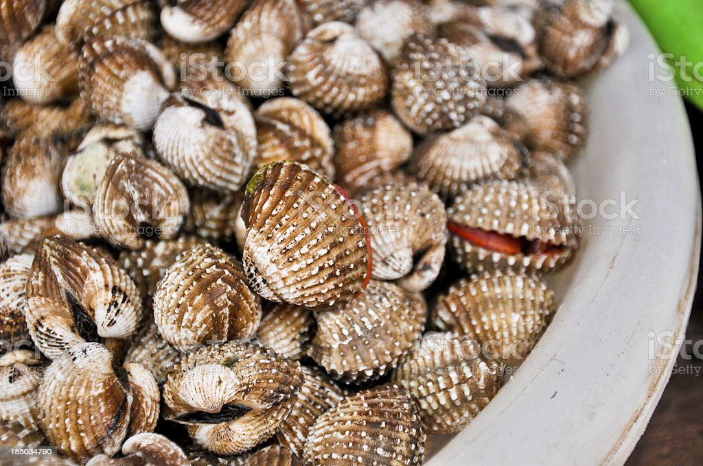 close up Fresh raw clams prepared at open market,Thailand stock photo