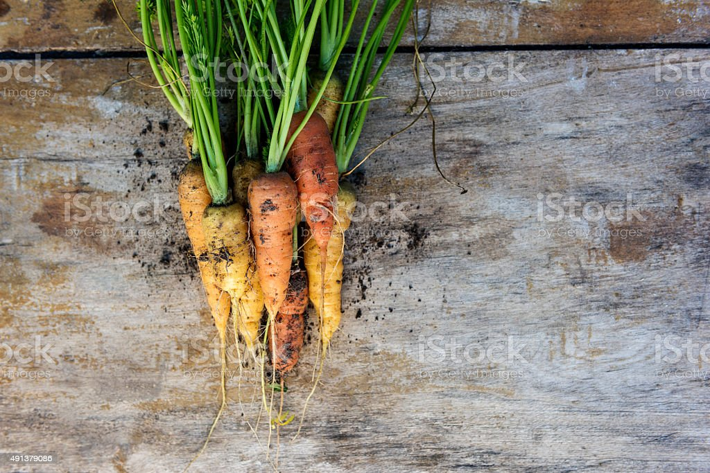 Close Up Fresh Vintage Carrots Against  Weathered Wooden Background stock photo