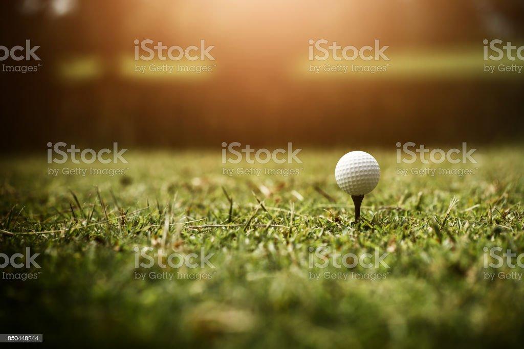 Close up golf ball on green grass. stock photo