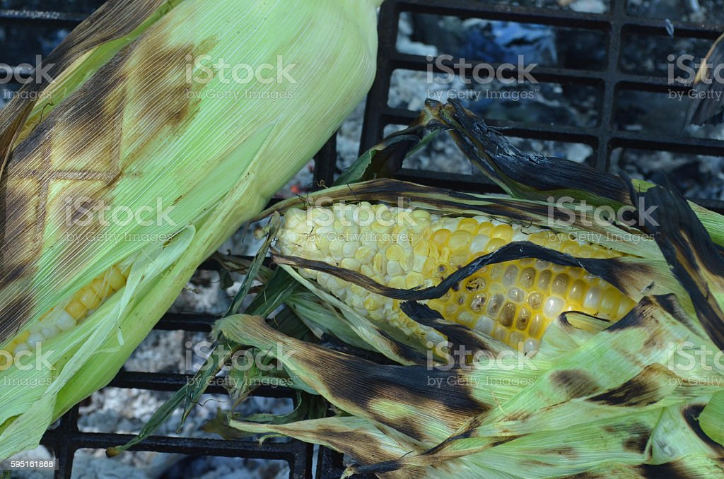 close up grill corn in green husks with grill marks stock photo