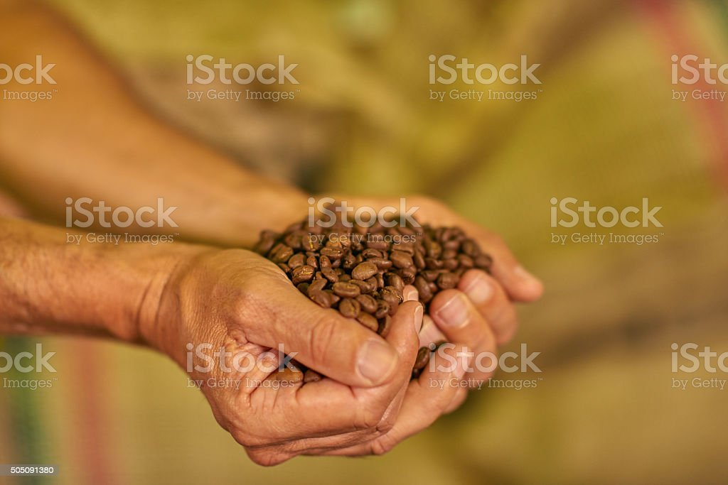 Close up hands with coffee beans stock photo