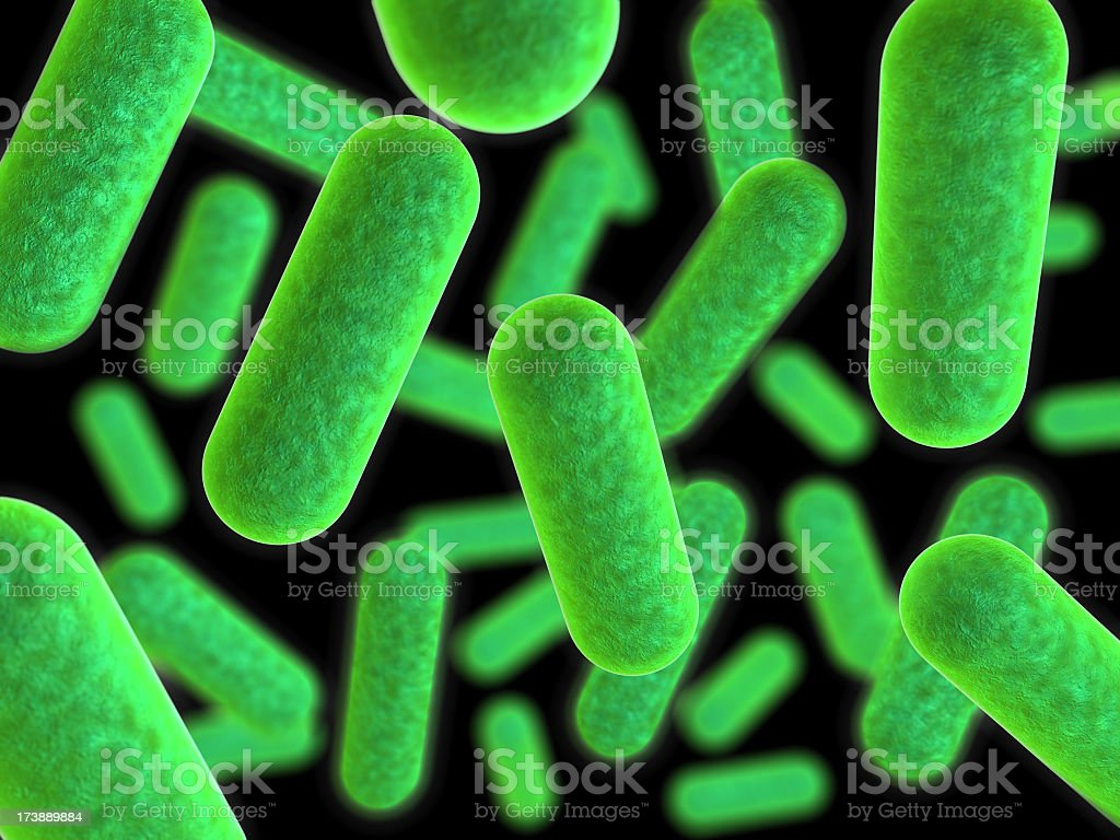 Close up image of bacteria in lime green and black stock photo