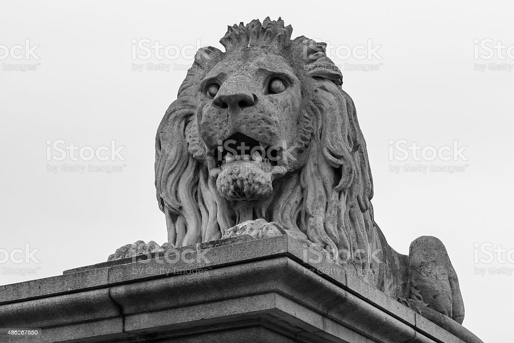 Close up lion statue at  the Chain bridge, Budapest, Hungary stock photo