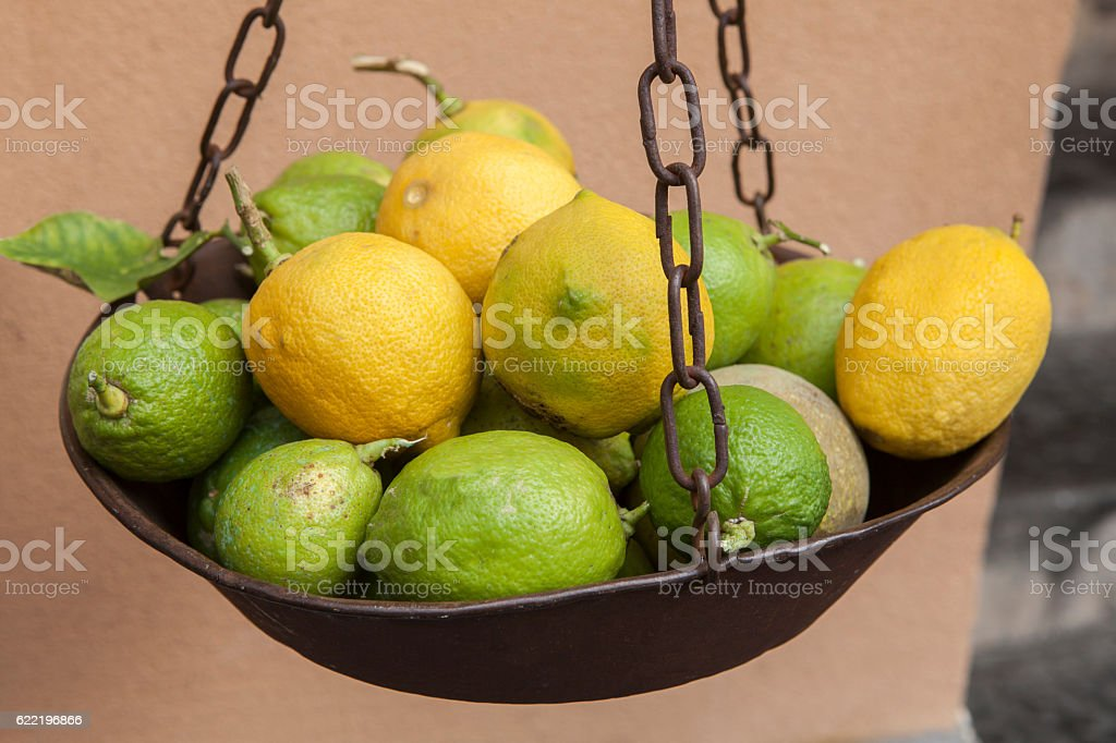 close up mediterranean lemon in sorrento south italy stock photo