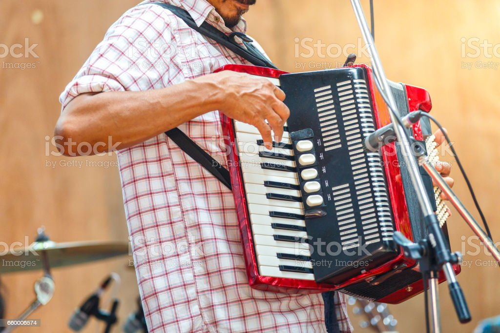 Close up musicians are playing accordion on stage stock photo