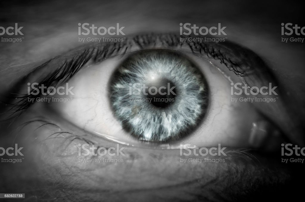 Close Up Of A Blueish Grey Eye stock photo