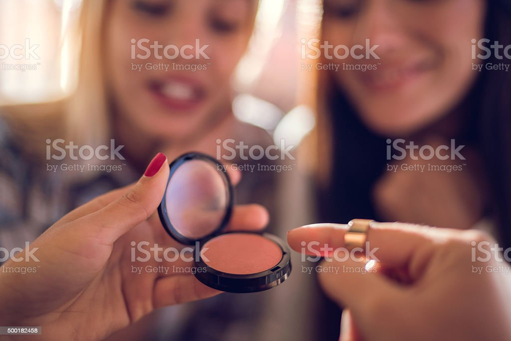 Close up of a blush in woman's hand. stock photo