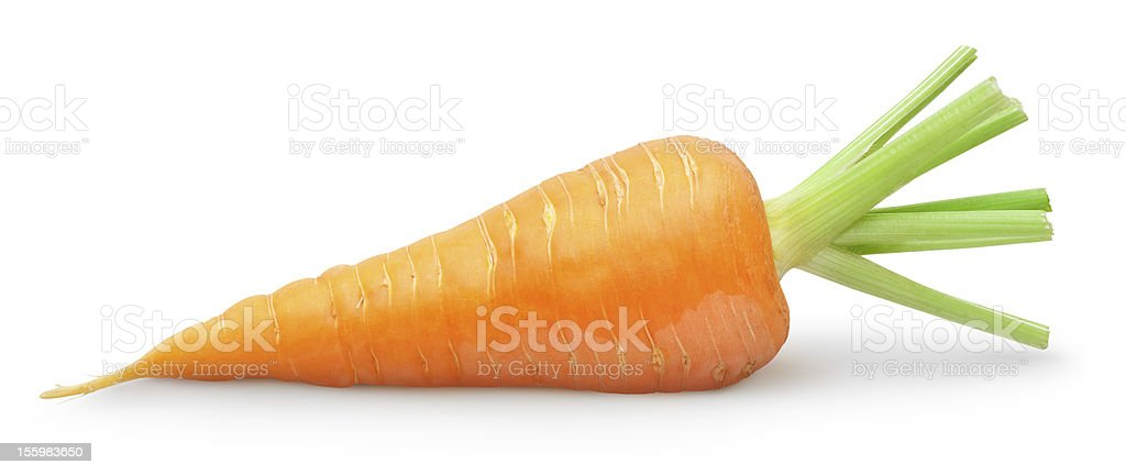 Close up of a carrot with green leaves royalty-free stock photo
