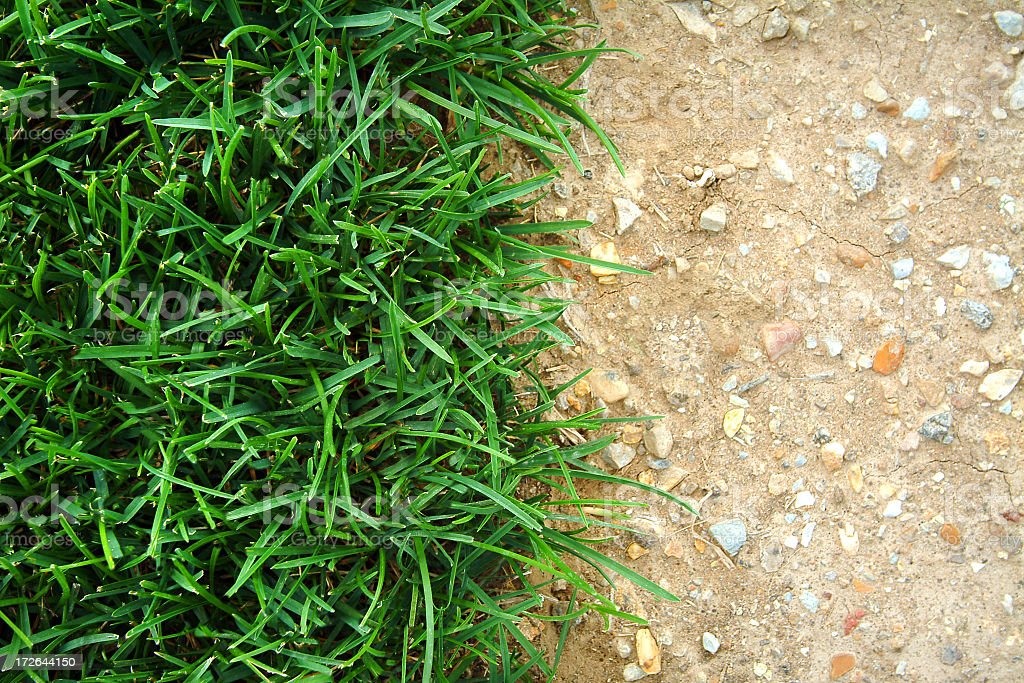 Close up of a fresh grass and a dried cracked dirt royalty-free stock photo
