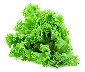 A close up of a green curly leaved lettuce