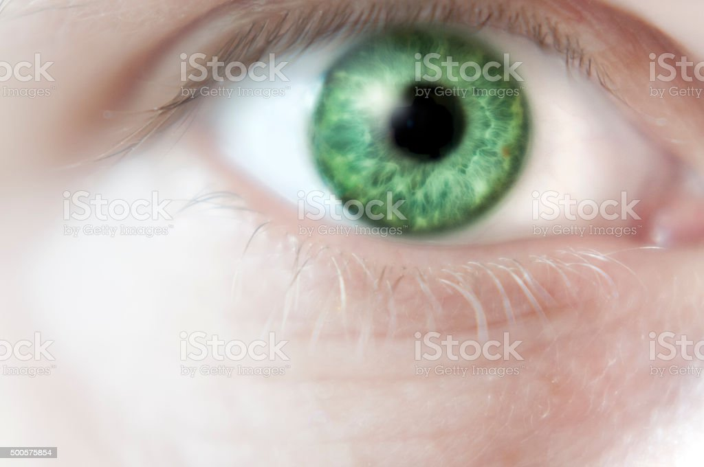 Close Up Of A Green Eye stock photo