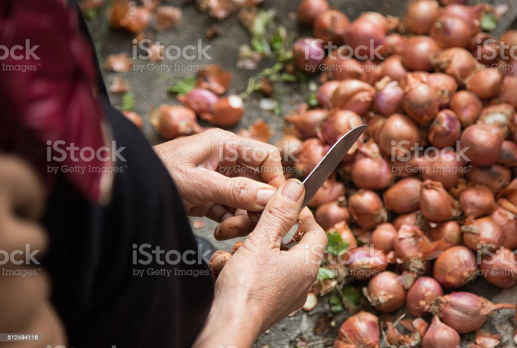 Close up of a hand slicing onion, red onion stock photo