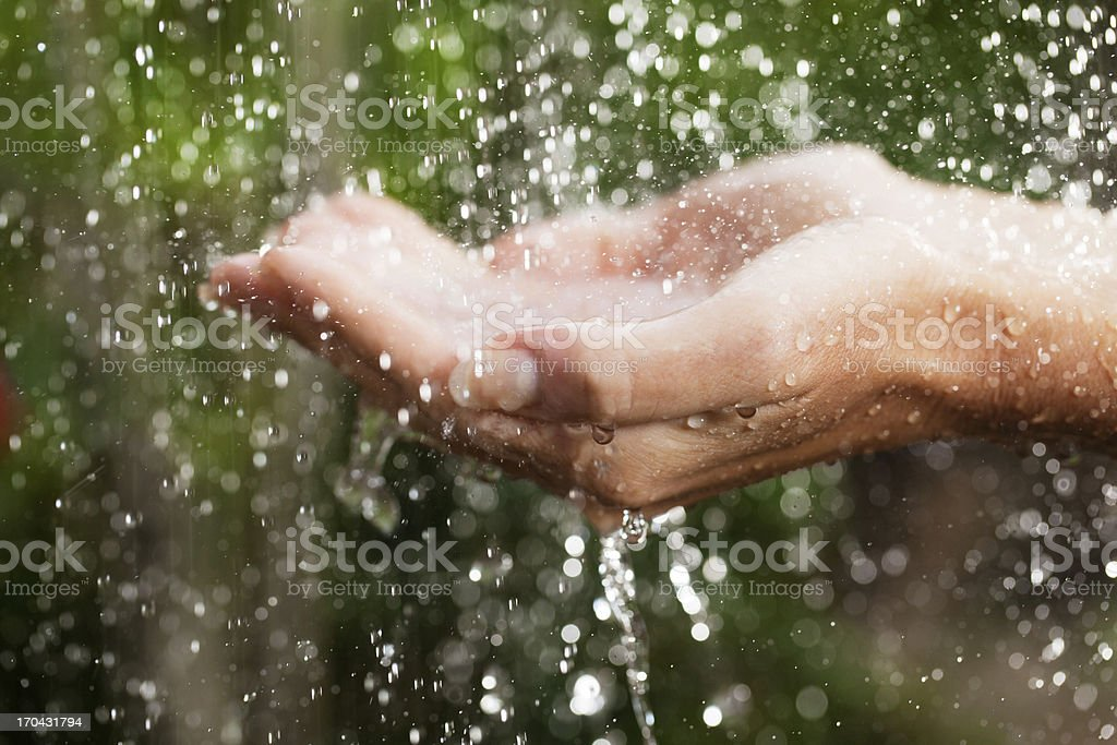 Close up of a hands on tropical rain. stock photo
