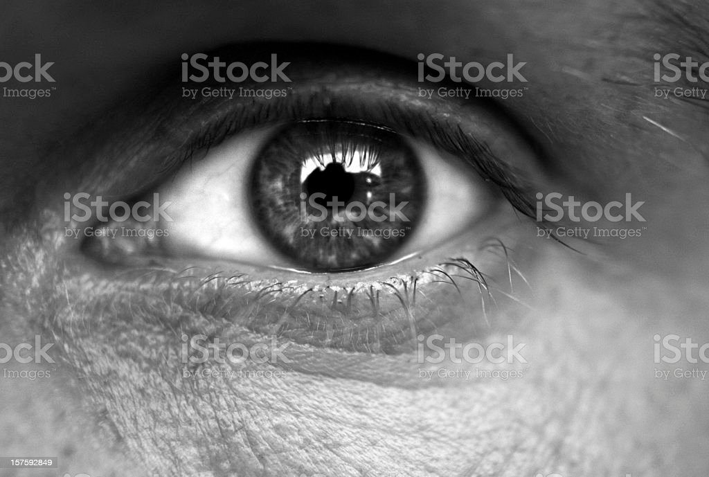 Close Up Of A Human Eye stock photo