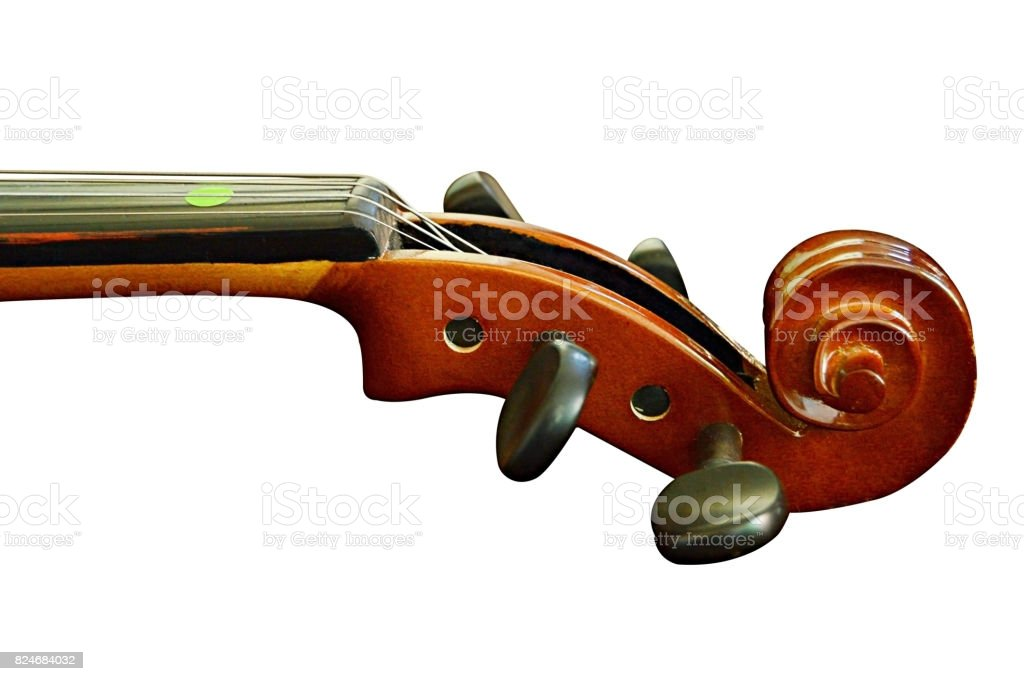 Close up of a violin scroll, tuning pegs and neck on a white background. Isolated, cut out over white stock photo
