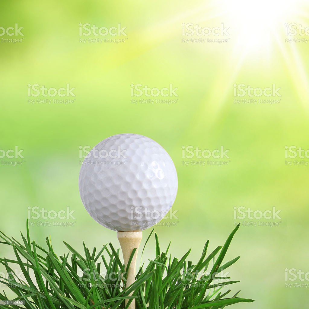 Close up of a white golf ball on a tee stock photo