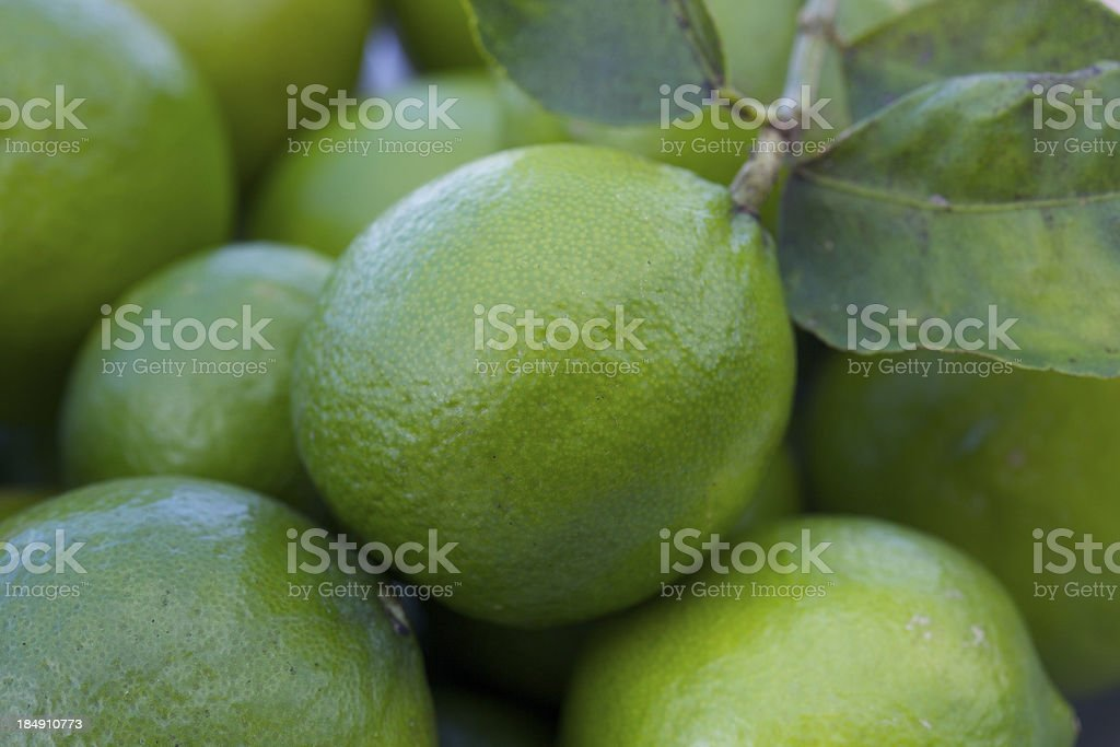 Close up of an green lime stock photo