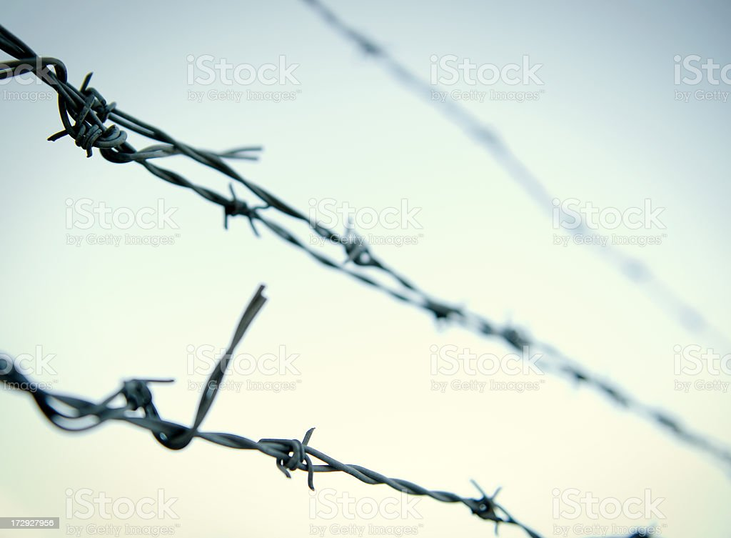 Close up of barbed wire against the blue sky stock photo