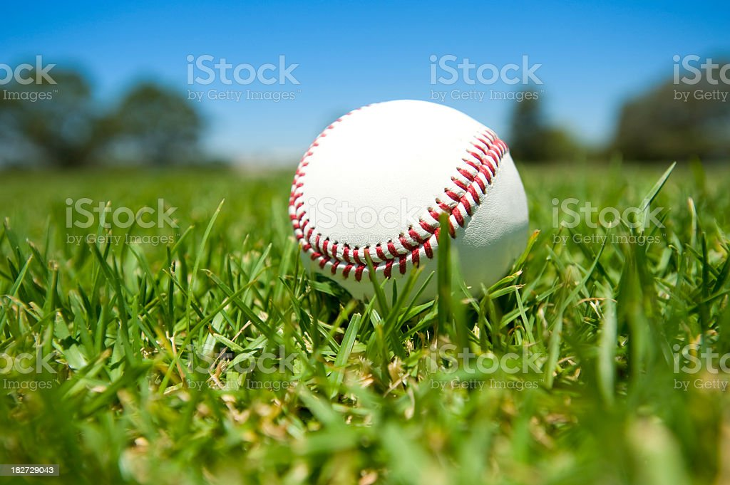 Close up of baseball in green grass stock photo