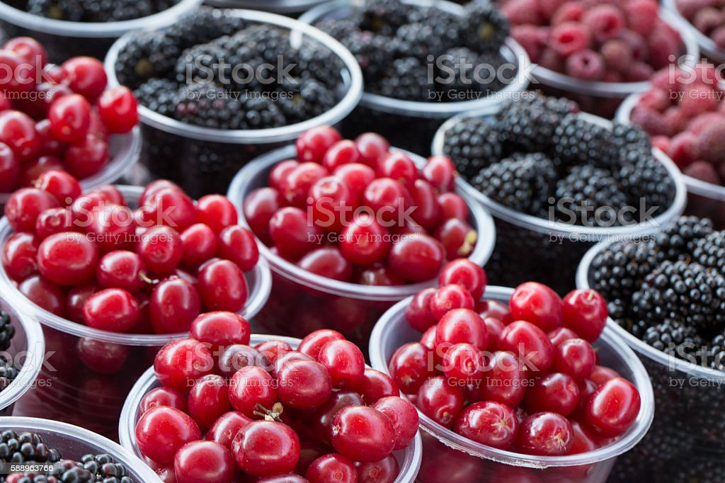 close up of blackberries and dogwoods in cups stock photo